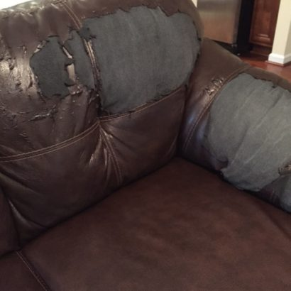 Save the Couch Campaign: A Mom's Plight for Sanity